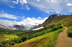 Walking trail in Alaskan mountain Royalty Free Stock Photos