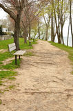 Walking trail with benches Stock Images