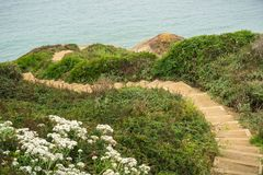 Walking trail on the bluffs of the Pacific Ocean coast royalty free stock photo