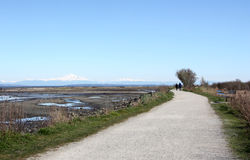 Walking Trail in Boundary Bay Stock Images