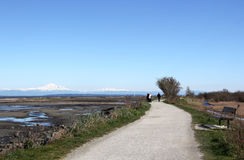 Walking Trail in Boundary Bay Stock Photography