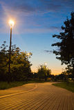 Walking trail in evening park in summer Royalty Free Stock Image