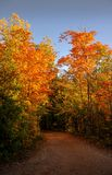 Walking this trail during the fall in Montreal, Quebec, Canada. Royalty Free Stock Photo
