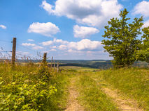 Walking trail on a Hill in a Green Summer Landscape. Patway through the Hills in Eifel, Germany Royalty Free Stock Photography