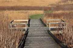 Walking trail with observation deck in a meadow Royalty Free Stock Photography