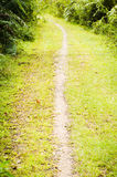 Walking trail in outdoors Royalty Free Stock Photos