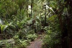 Walking trail Royalty Free Stock Image