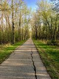 Walking Trail in Woods Royalty Free Stock Images
