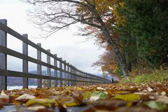 Walking trails at  Lake Yamanaka in the autumn season of Japan royalty free stock photos