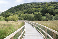 Walking trails in Wicklow Mountains National Park. Royalty Free Stock Image