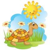 Walking turtle. Royalty Free Stock Photography