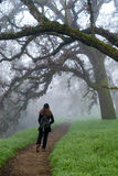 Walking into the unknown. Woman walking on a foggy trail in the winter, wearing black clothes and hat, and a backpack- uncertainty concept Royalty Free Stock Photography