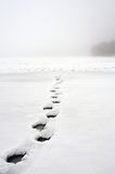 Walking on water. Wet footprints on iced lake Stock Images