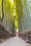Walking way leading to bamboo forest. Arashiyama Kyoto Japan Royalty Free Stock Image