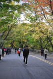 Walking way to the Seoul Tower Stock Photo