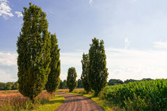 Walking ways in Germany Stock Photo
