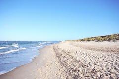 Walking through the Western Pomerania Lagoon Area National Park Royalty Free Stock Photography