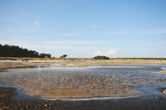 Walking through the Western Pomerania Lagoon Area National Park Stock Images