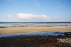 Walking through the Western Pomerania Lagoon Area National Park Royalty Free Stock Image