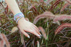 Walking through the wind and put the hand on the grass. royalty free stock images