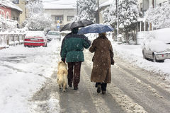 Walking in winter Stock Photography