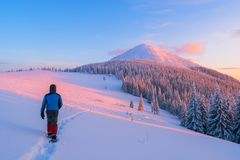 Walking in the winter mountains Stock Photography