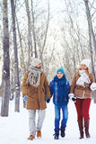 Walking in winter park Stock Photography
