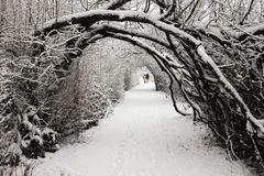 Walking in a winter wonderland. Royalty Free Stock Image