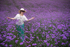 Walking woman in Lavender Field royalty free stock photo