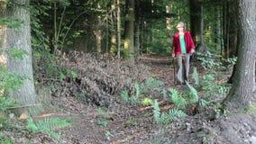 Walking. A woman walking through nature stock video footage
