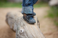 Walking On Wood At Park Royalty Free Stock Photography
