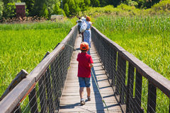 Walking on wooden bridge Royalty Free Stock Image