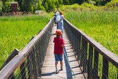 Walking on wooden bridge Royalty Free Stock Image