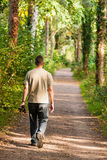 Walking in Woodland Stock Images