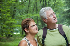 Walking in the woods. Two seniors are walking in the woods Royalty Free Stock Image