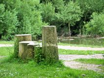 Walking in the woods near the River Humber. 1 of many carved sign posts in the woods near the River Humber Stock Images