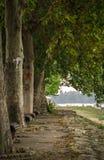 Walking zone. Along the riverside of Danube, Zemun, Belgrade Stock Image