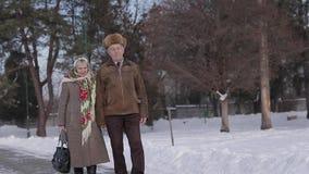 Walkink mayor romántico de los pares en el parque en invierno Amor por siempre metrajes