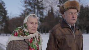 Walkink mayor romántico de los pares en el parque en invierno Amor por siempre almacen de metraje de vídeo