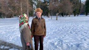 Walkink mayor romántico de los pares en el parque en invierno Amor por siempre almacen de video