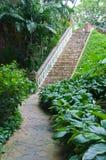 Walklway nel giardino Immagine Stock