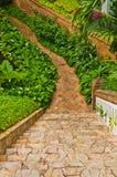 Walklway nel giardino Immagini Stock