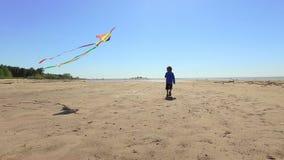 Walkng do rapaz pequeno com o papagaio na praia filme