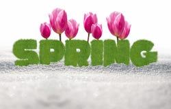 Walkower zima, Cześć wiosna! obraz royalty free