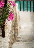 Walkpath through a flourishing seaside garden Stock Photos