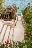 Walkpath through a flourishing seaside garden Stock Photo