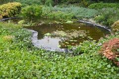 walkpath ogrodowa japońska woda Zdjęcie Stock