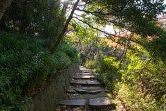 Walkpath y escaleras de piedra en jardín Imagen de archivo libre de regalías