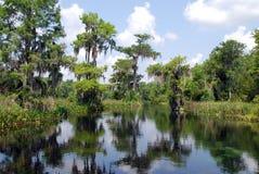 Walkulla Springs. Wakulla Springs State Park in Florida Stock Photo