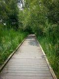 walkway στοκ εικόνα